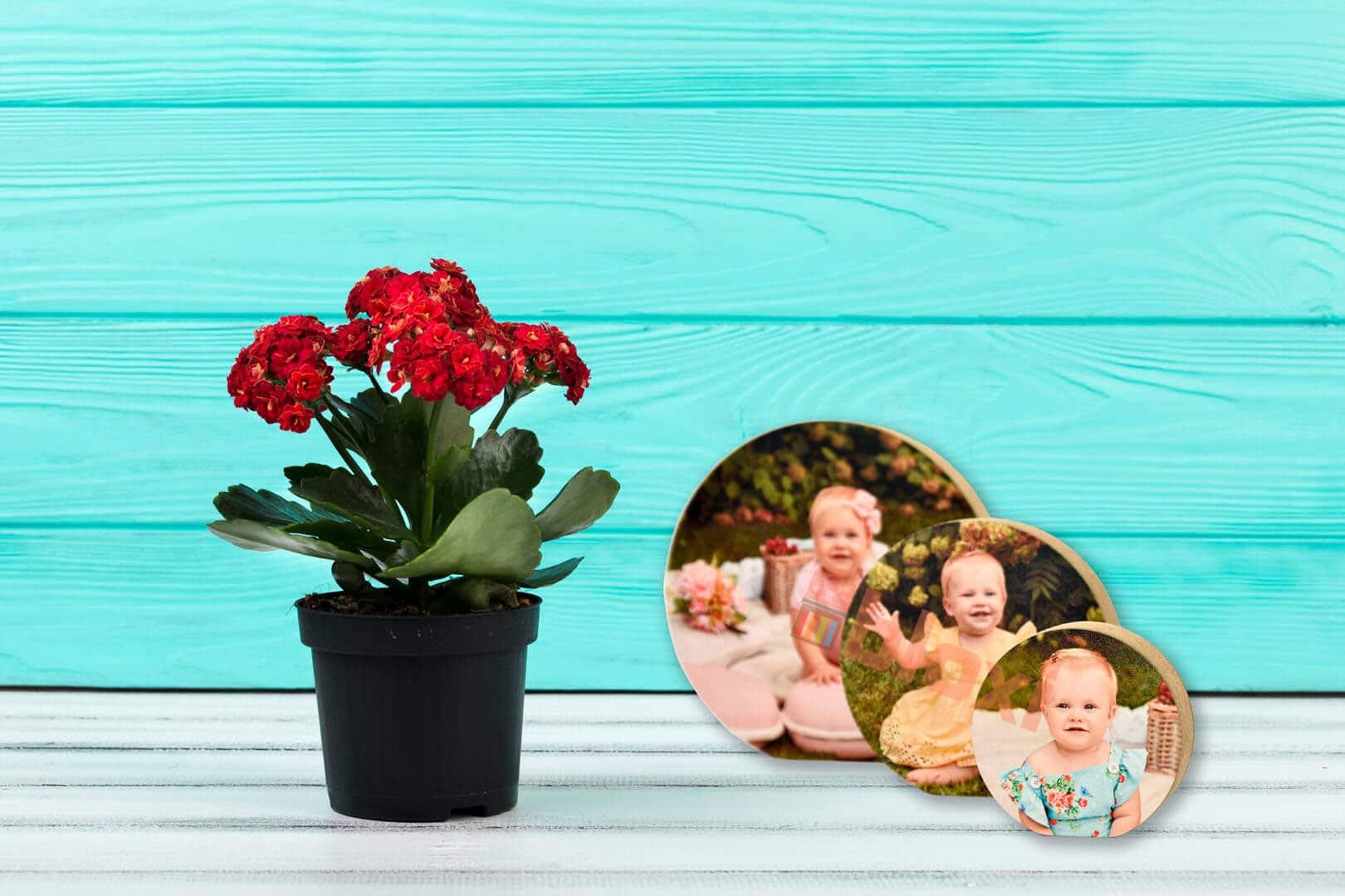 מתנה לאמא ליום הולדת הדפסה על בלוק בלוקסי