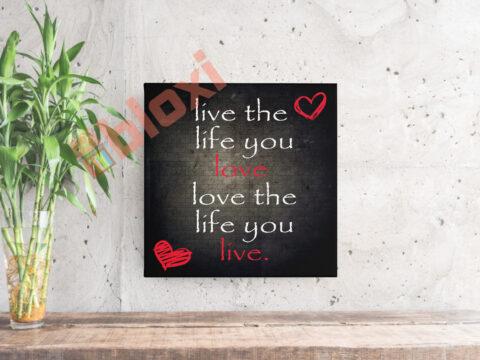 בלוק השראה live the life you love 17x17